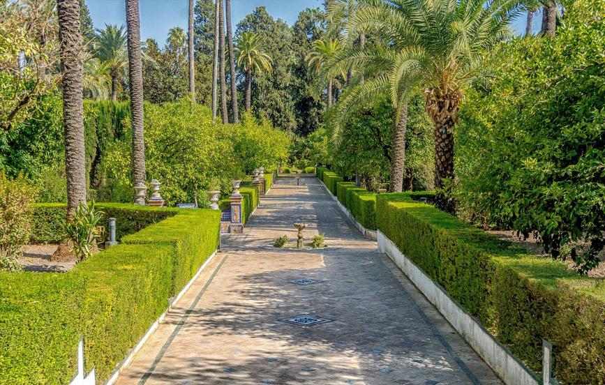 Tourist-Wedding---Seville-Spain-